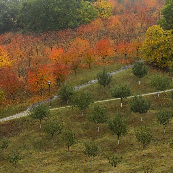 Barevný podzimní Petřín