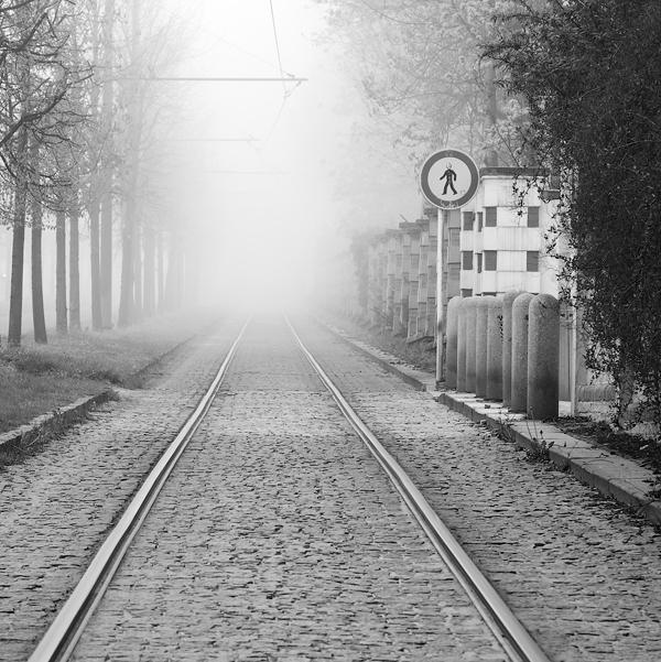 Cesta nikam