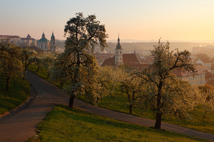 Chrámy z Petřína