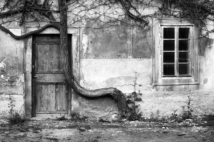 Dveře a okno