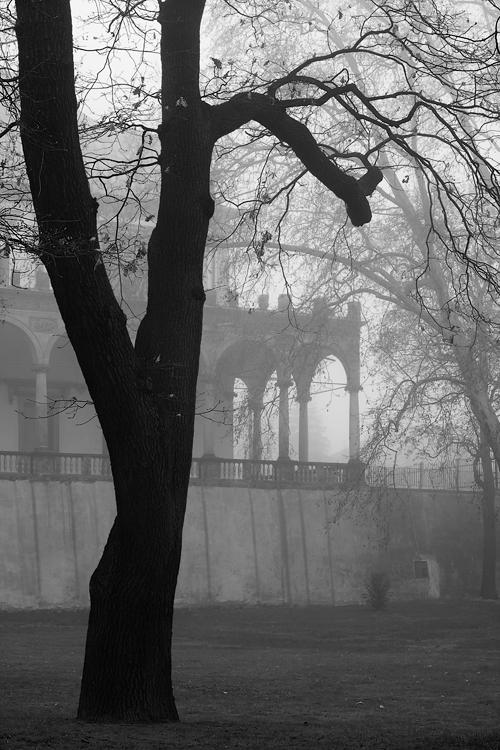 Letohrádek královny Anny v mlze
