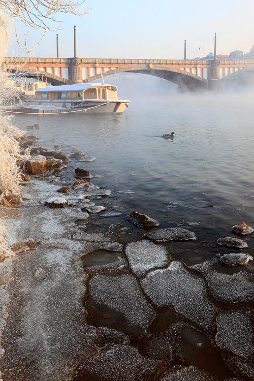 Mánesův most v mlze