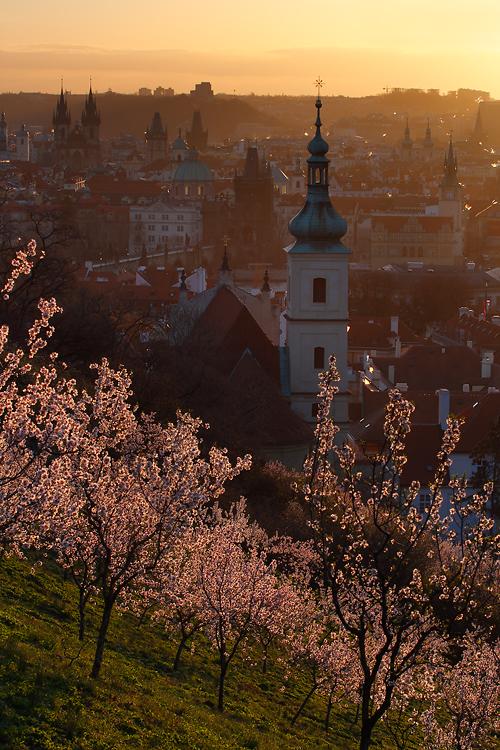 Kostel panny Marie vítězné - jaro