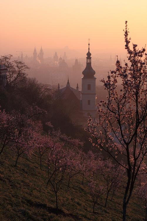 Petřínské jaro