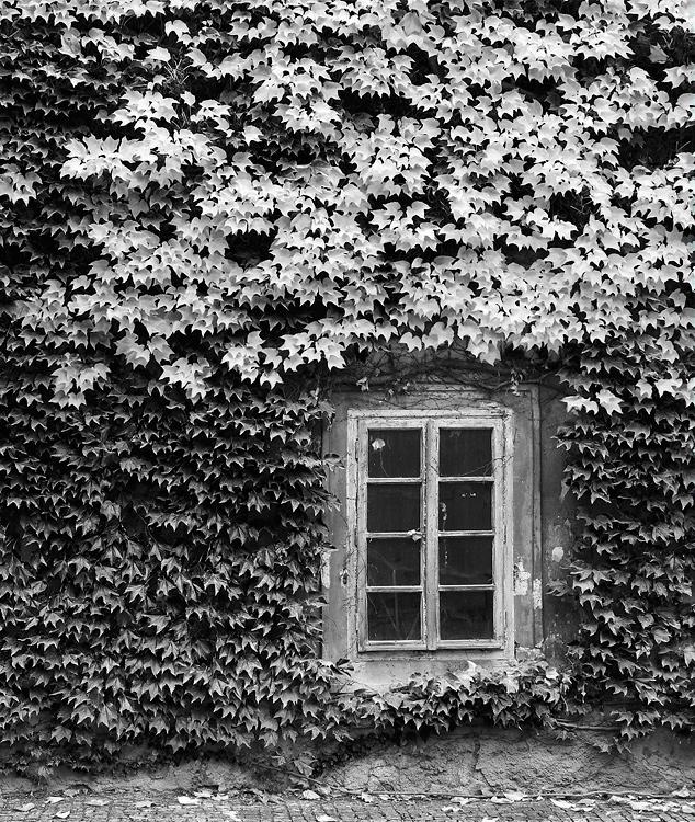 Strahovský klášter - nádvoří