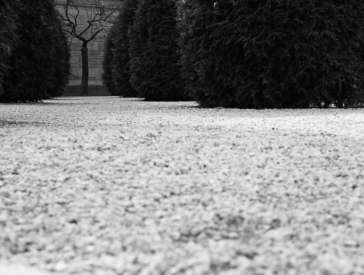 Zahrada na baště IV.